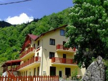 Bed and breakfast Straja (Căpușu Mare), Georgiana Guesthouse