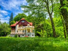Bed and breakfast Vulturești, Boema Guesthouse