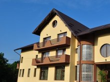Accommodation Vorniceni, Daiana Guesthouse