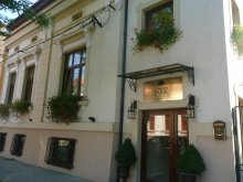 Bed and breakfast Milcoveni, Boutique Pension Park