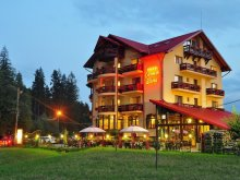 Accommodation Vicoleni, Carmen Silvae Guesthouse