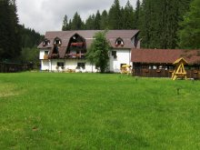 Accommodation Lunca (Pătârlagele), Hartagu Chalet