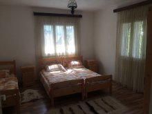 Vacation home Peste Valea Bistrii, Joldes Vacation house