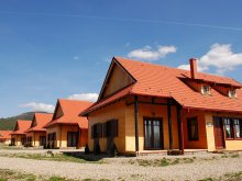 Bed and breakfast Ditrău, Seven Flower Guesthouse