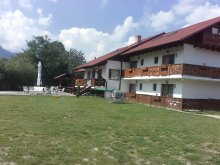 Bed and breakfast Valea Mare-Bratia, Casa Gobbel Guesthouse