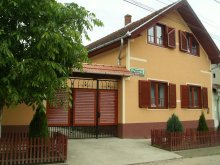 Accommodation Talpoș, Boros Guesthouse