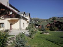 Accommodation Vorniceni, Anastasia Guesthouse