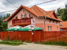Bed and breakfast Izvoru Berheciului, Picnic Guesthouse