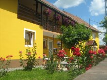 Guesthouse Băile Selters, Gabriella Guesthouse