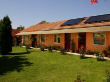 Accommodation Hodoș, Turul Guesthouse & Camping
