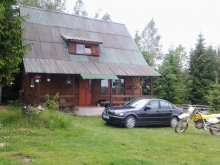 Accommodation Dealu Negru, Diana Chalet
