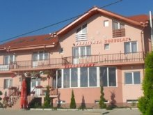 Accommodation Gepiș, Rozeclas Guesthouse