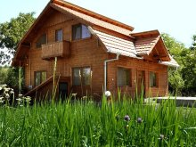Accommodation Valea Bistrei, Iancu Guesthouse