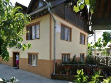 Bed & breakfast Ruștin, Iancu Guesthouse