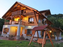 Bed & breakfast Prislop (Cornereva), Gasthaus Maria Guesthouse