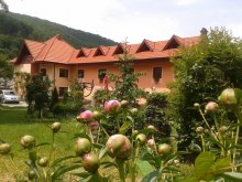 Accommodation Dobolii de Jos, Mariana Guesthouse