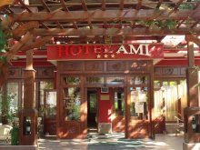 Accommodation Valea Mare de Codru, Hotel Ami