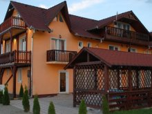 Accommodation Rucăr, Mountain King Guesthouse