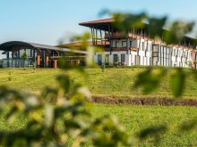 Accommodation Gura Șuții, Casa Vlăsia Hotel