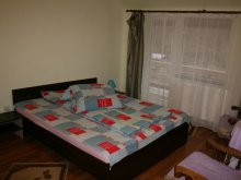 Bed & breakfast Borleasa, Elisabeta Guesthouse