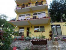 Bed & breakfast Valea Mare, Floriana Guesthouse