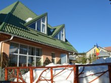 Accommodation Valea Cucii, Condor Guesthouse