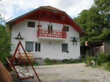 Chalet Băile Homorod, Bancs Guesthouse