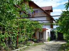Accommodation Gaiesti, Madaras Guesthouse