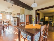 Accommodation Dunasziget, Villa Corvina