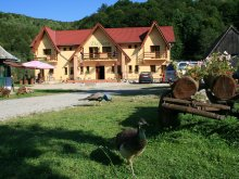 Bed and breakfast Peste Valea Bistrii, Dariana Guesthouse