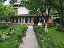 Guesthouse Rodna, Casa Danci Guesthouse