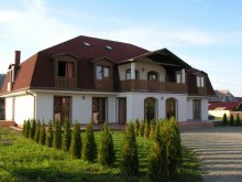 Bed & breakfast Băile Homorod, Palace Guesthouse