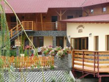 Bed & breakfast Valea Uzei, ARA Guesthouse