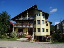 Bed & breakfast Cuza Vodă, Orhideea Guesthouse