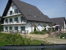 Bed & breakfast Suceava county, Passiflora Guesthouse