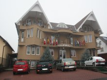 Accommodation Coșeriu, Full Guesthouse