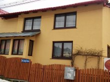 Guesthouse Prislopu Mic, Doina Guesthouse