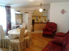 Accommodation Dealu Mare, Casa Saos Apartment