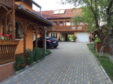 Bed and breakfast Bisericani, Fenyő Guesthouse
