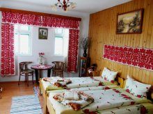 Accommodation Tiur, Kristály Guesthouse