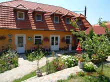 Bed & breakfast Sibiciu de Jos, Todor Guesthouse
