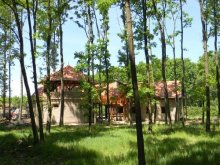 Guesthouse Somogy county, Vackor Guesthouse