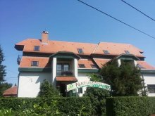 Bed & breakfast Vilyvitány, Natura Guesthouse