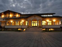 Accommodation Petricani, Curtea Bizantina B&B