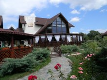 Bed & breakfast Cotmeana (Stolnici), Casa Cristina Guesthouse