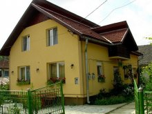 Bed & breakfast Borleasa, Bio Pension