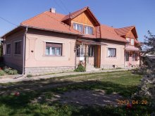Bed & breakfast Cheț, Ady Pension