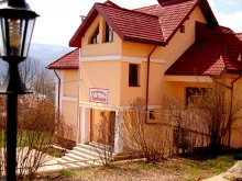 Bed and breakfast Valea Lupului, Ambiance Guesthouse