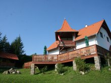Accommodation Dealu Mare, Nyergestető Guesthouse