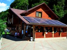 Hotel Dealu Botii, Sequoia Guesthouse